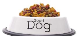 Conseil alimentation du chien